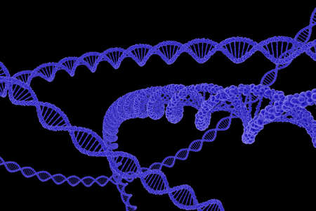 dna double helix: DNA Double Helix Strands Isolated on Black Background - 3D Illustration