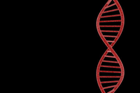 dna double helix: Red DNA Double Helix Isolated on Black Background with Copy Space 3D Illustration Stock Photo