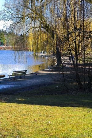 tranquille: lost lagoon in vancouver Stock Photo
