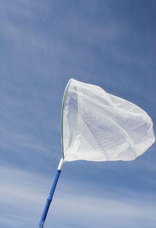 butterfly net: butterfly net over blue sky