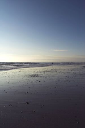 deserted purple beach