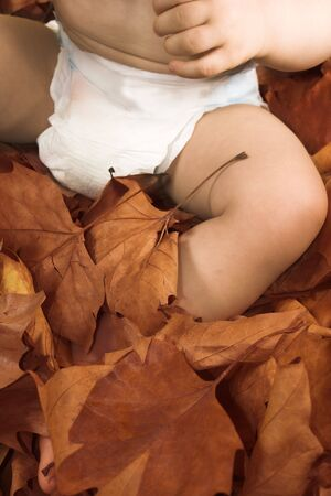 tranquille: baby  sitting on leaves in fall season