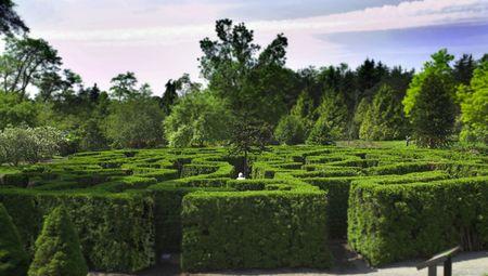 밴쿠버 정원 vandusen 공원에서 미로의 사진 스톡 콘텐츠 - 1079546