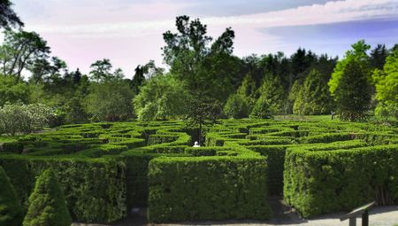 photo of maze in vancouver garden vandusen park Stock Photo