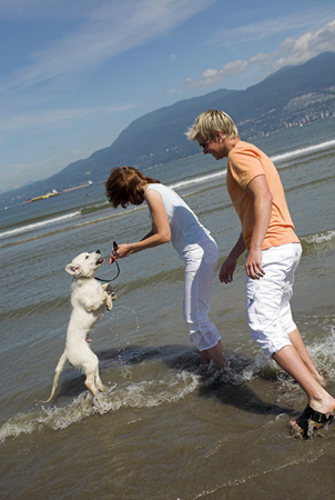 young couple playing with  dog on the beach vancouver photo