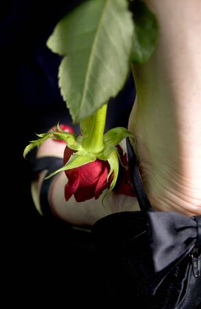 female feet with a rose over black background photo