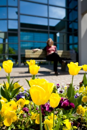 forground: woman resting in bench with flower in forground