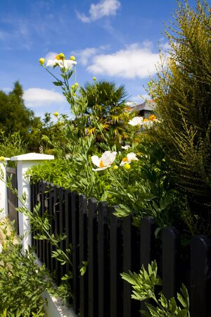 fense: house fense with flowers over blue sky