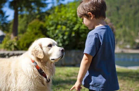 boy looking at dog at day time Stock Photo - 10375025