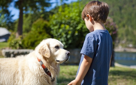 boy looking at dog at day time photo