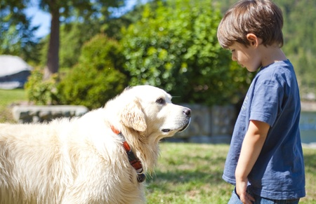 boy looking at dog at day time Stock Photo