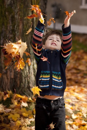 little boy playing in leaves at fall time photo