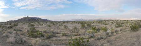 Mojave National Preserve in California