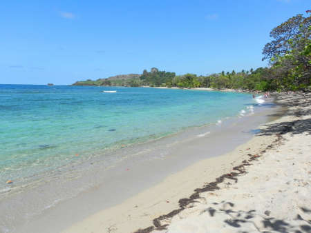Beach in Dominican Republic photo