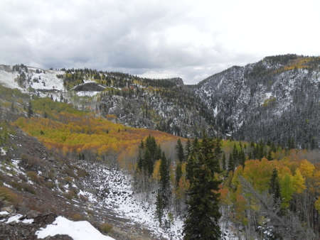 osier: Aspen trees and Toltec Gorge along Cumbres & Toltec Railroad Stock Photo