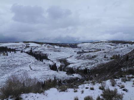 Along Cumbres & Toltec Railroad near Osier, Colorado photo