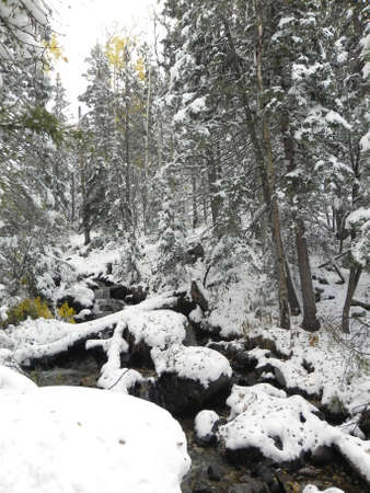Stream after fall snowstorm in Sangre de Cristo Mountains in New Mexico photo