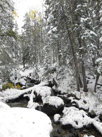 Streamen na de val van sneeuwstorm in Sangre de Cristo Mountains in New Mexico