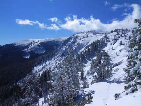 Sangre de Cristo Mountains from Bull of the Woods Mountain in New Mexico photo