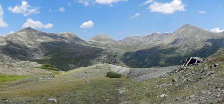 twining: Rocky Mountains near Aspen Colorado