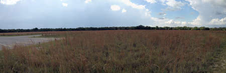 Field in Dinosaur Valley State Park, Texas