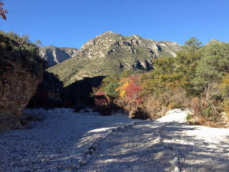 Fall Morning in McKittrick Canyon in Guadalupe Mountains National Park, Texas photo