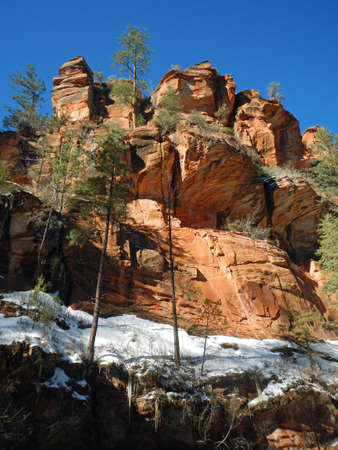 coconino national forest: Cliffs along trail in Coconino National Forest in Arizona