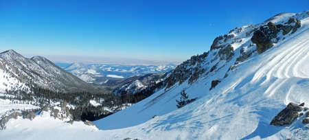 Bekijk oosten van Humphrey's Peak Trail in Coconino National Forest in Arizona