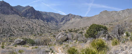 Pine Springs Canyon in Guadalupe Mountains National Park, Texas Stock Photo