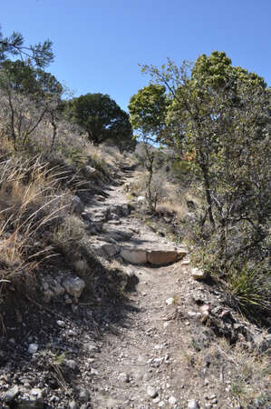 Trail in Guadalupe Mountains National Park, Texas photo