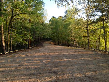 national forest: Road en Holly Springs National Forest, Mississippi