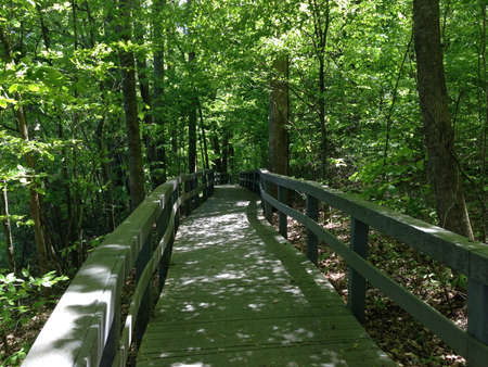 national monument: Boardwalk in Russell Cave National Monument, Alabama