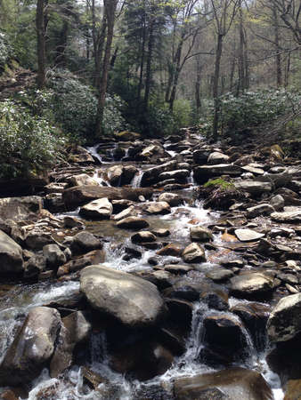 smoky: Stream in Great Smoky Mountains, Tennessee