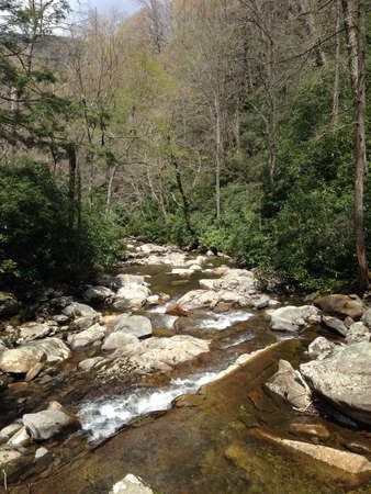 smoky: Mountain stream in Great Smoky Mountains, Tennessee Stock Photo
