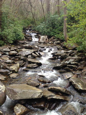great smokies: Stream in spring in Great Smoky Mountains, Tennessee Stock Photo