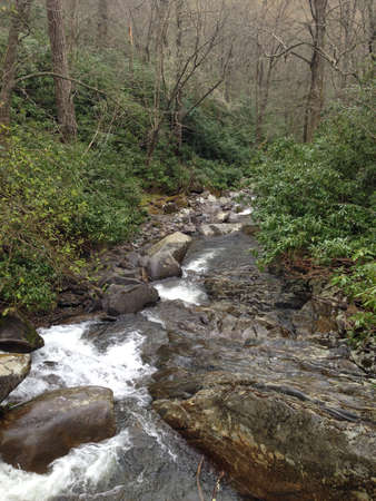 smokies: Stream in Great Smoky Mountains, Tennessee