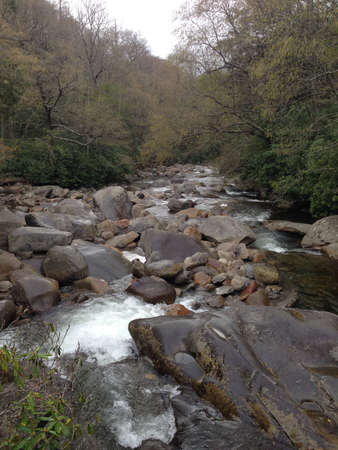great smoky mountains: Stream in Great Smoky Mountains, Tennessee