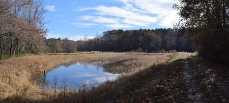Ponds at the University of Mississippi Field Station in November
