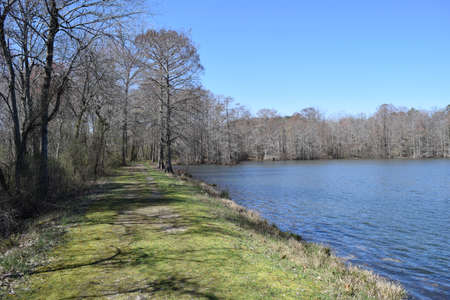 Trail on the dam in Wall Doxey State Park, Mississippi Stock Photo