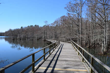 Pier along the lake and swamp in Wall Doxey State Park, Mississippi