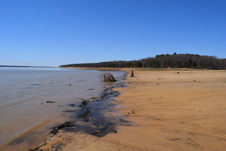Debris on the shoreline of Enid Lake in Mississippi