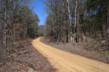 Dirt road to Enid Lake in Mississippi
