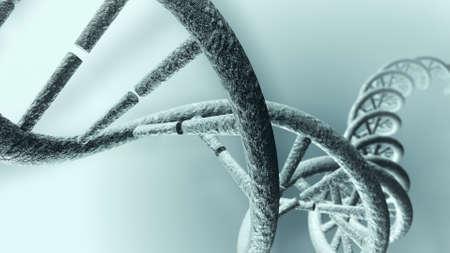 Long DNA strand