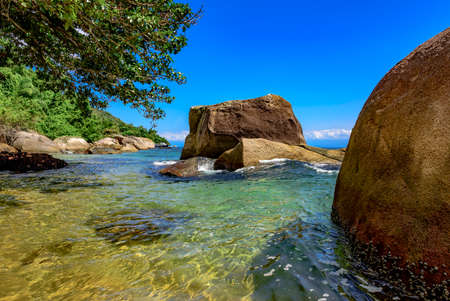 clear waters: Meeting between vegetation and the sea with its warm clear waters of the beach Itaguau, Ilha Grande, Angra dos Reis region known to the Green Coast in Rio de Janeiro Stock Photo