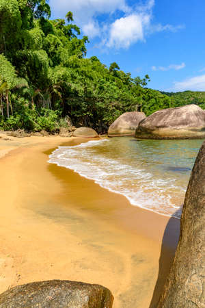 limpid: Deserted and unspoilt beach with its limpid and transparent waters that meet the rainforest