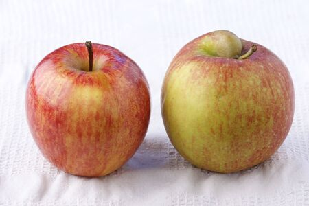 pome: Apples with and without handicap on white cloth