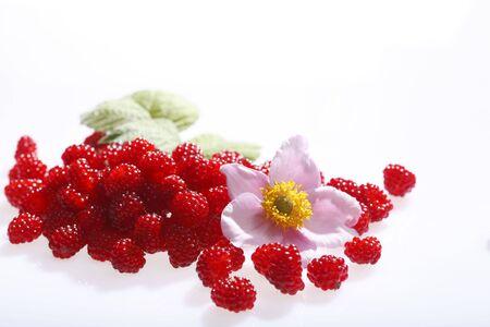 highend: Highend shot of fresh raspberries