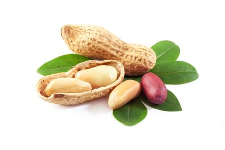 nutshell: Raw peanuts in the nutshell