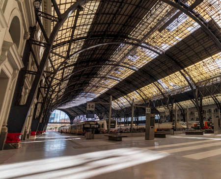 Trains on the platforms of a Barcelona station with a fantastic roof