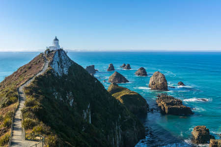 Nugget Point Lighthouse, South Island New Zealand 12